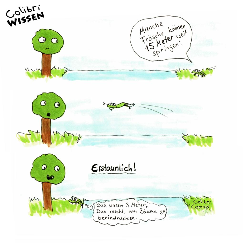 Froschi springt zu Baumi. 3 Meter weit. Immerhin!
